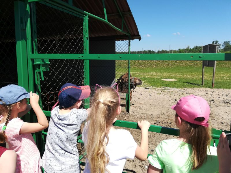Zespół Szkół w Chorzelowie Dzień Dziecka