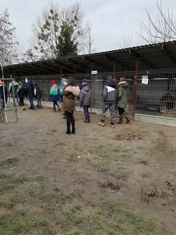 Zespół Szkół w Chorzelowie Pomagamy zwierzętom przetrwać zimę