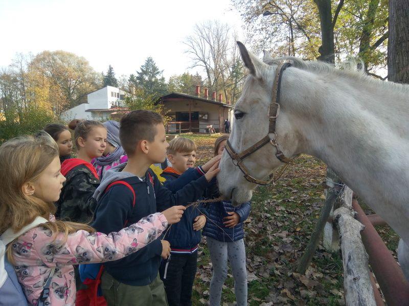 Zespół Szkół w Chorzelowie Wycieczka do ZZD w Chorzelowie